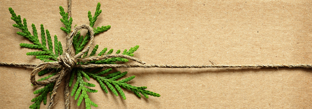 twine bow with greenery on brown paper wrapping
